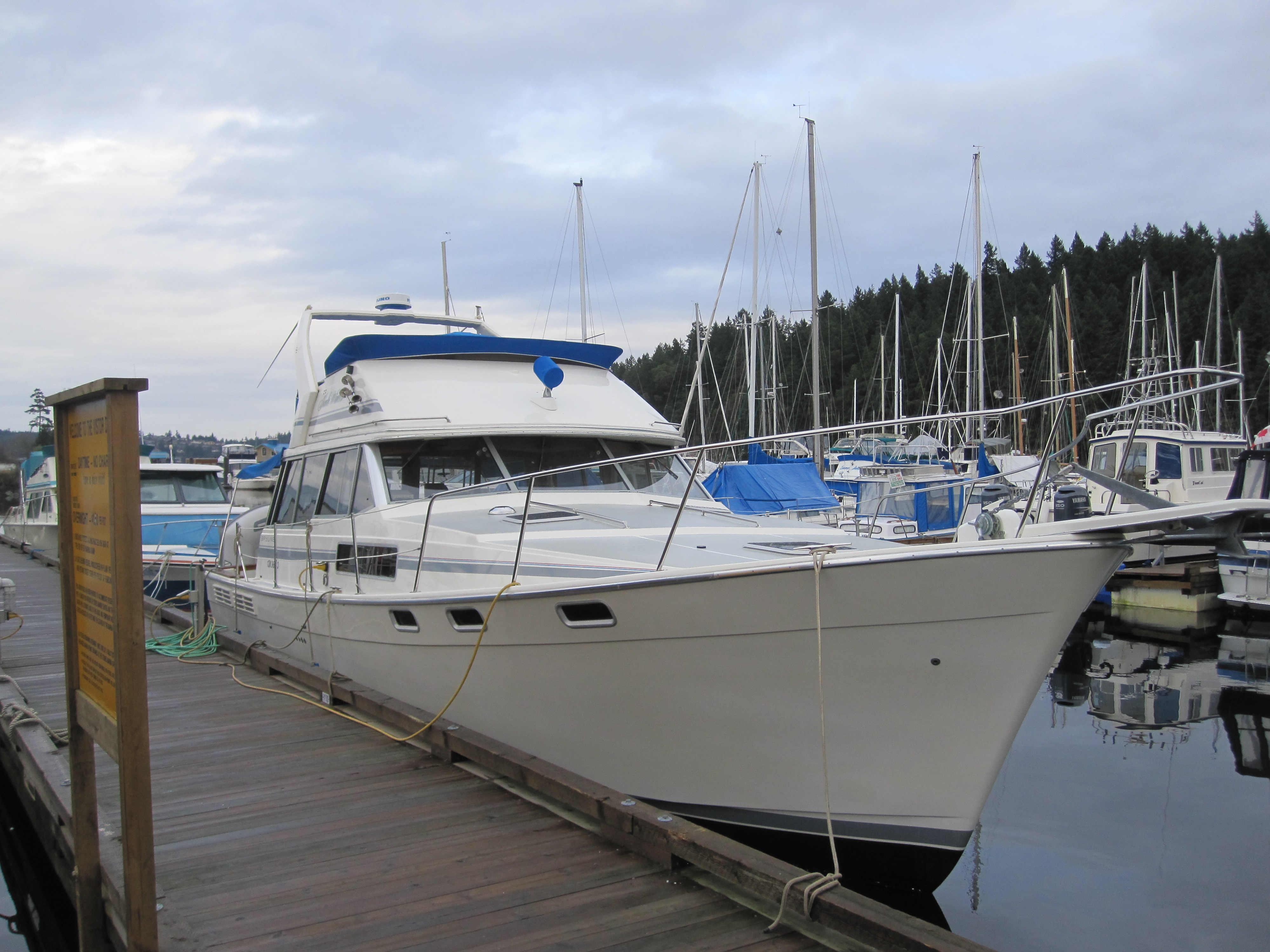 Yacht charter Bayliner 3888 - Canada, Vancouver, Nanaimo